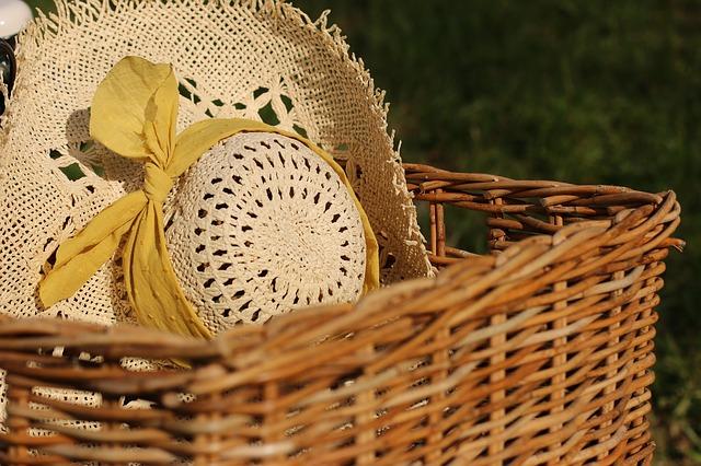 picnic photo