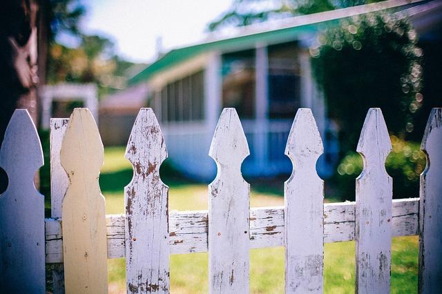 neighbors photo