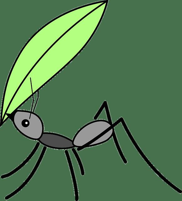 La hormiga y el saltamontes 8